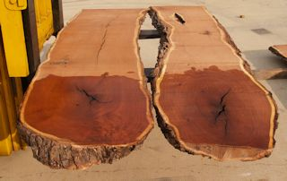 Matched pair of Mesquite Slabs in rough form.