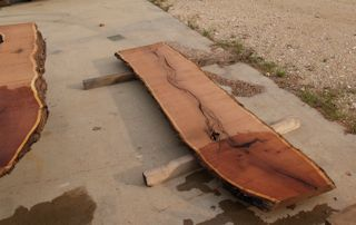 Mesquite Slab in rough form.