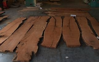 A group of Mesquite slabs in rough form.